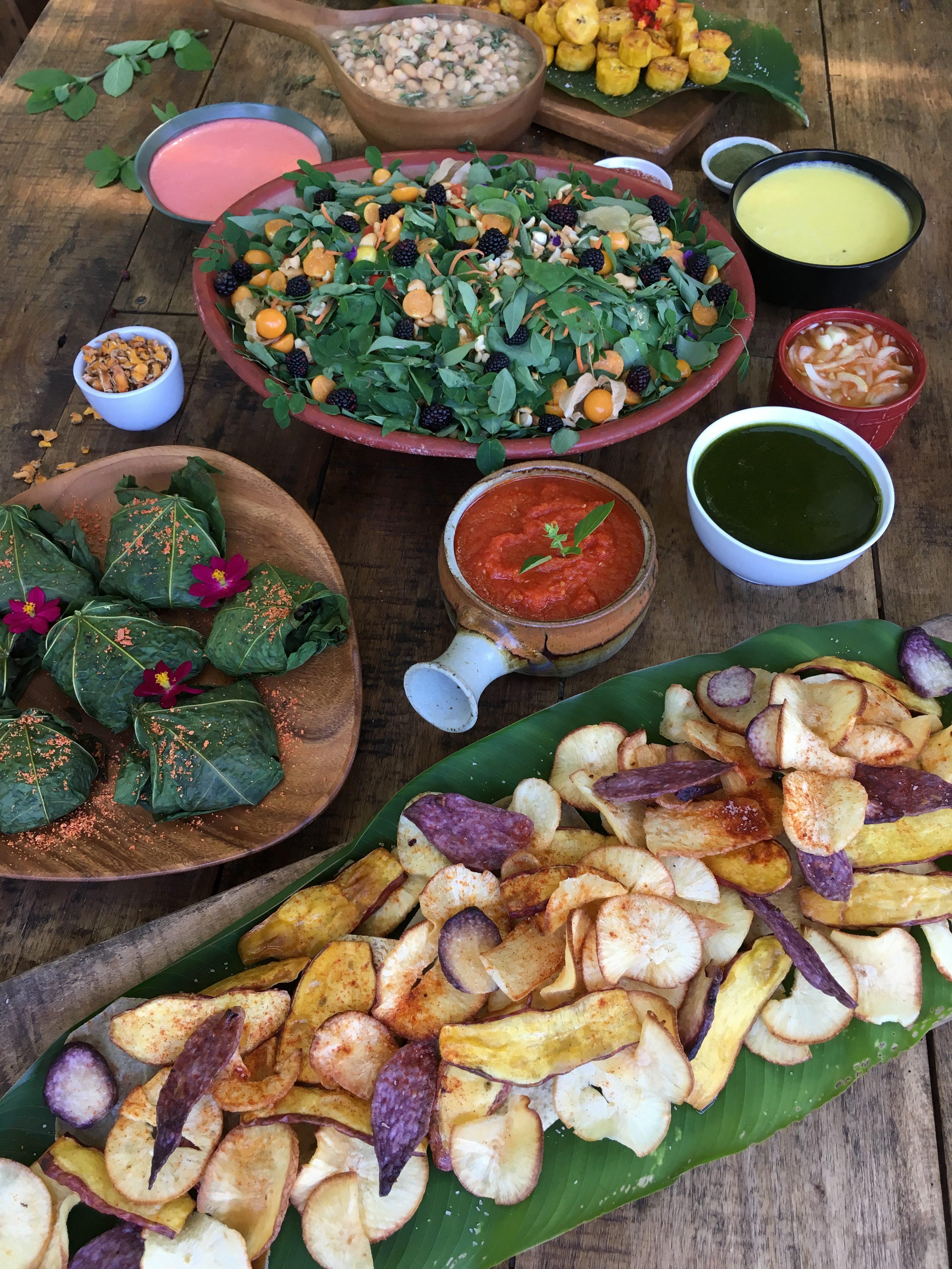 #13# COSTA RICA, de la péninsule de Nicoya à la jungle des Caraïbes