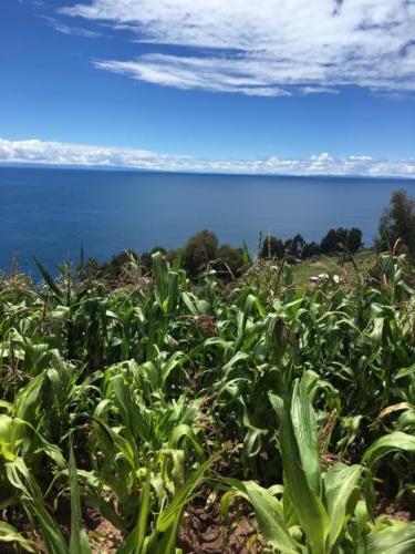 île Taquile, Titicaca (2)