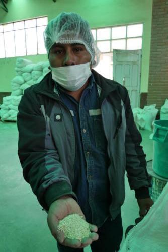 Alex chef de l'usine Cecaot