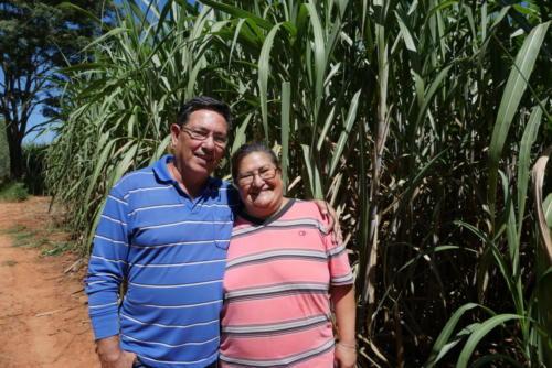 Augustin & Cristina, producteurs de canne