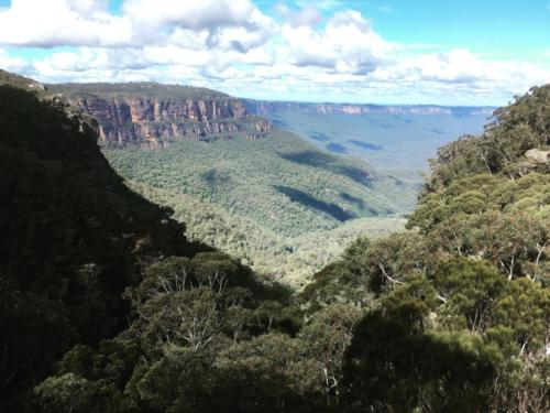 Blue Mountains (2)