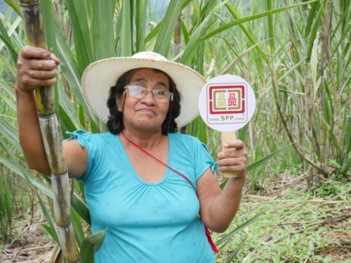 Bonifacia, productrice de panela Norandino (2)