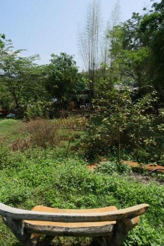 Bunch garden