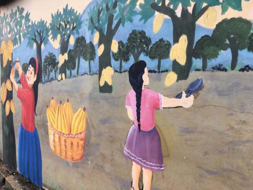 Caluco, la naissance du cacao a El Salvador