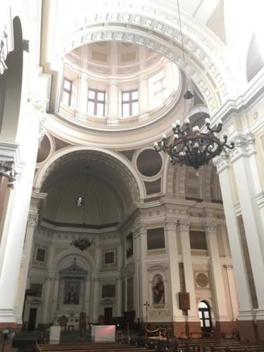 Cathédrale métropolitaine (2)