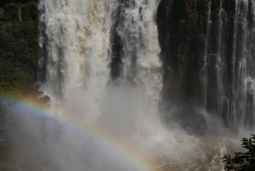 Chutes d'Iguaçu (15)