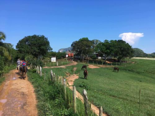 Découverte des fermes agroécologiques, Vinales