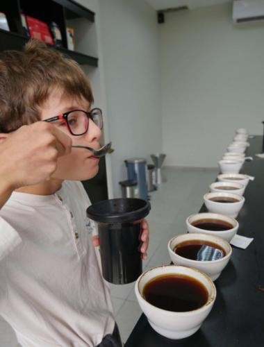 Dégustation café Louis