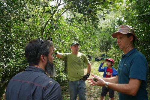 Discussions permaculturelles (2)