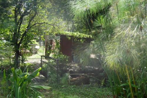 Djanbung Gardens (3)