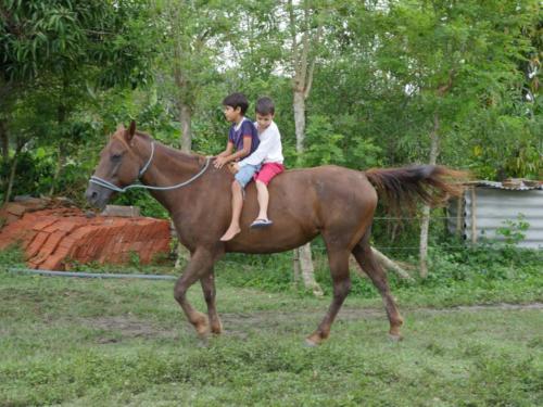 Esteban et Dario à cheval