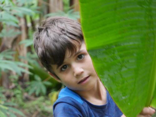 Esteban feuille banane (4)