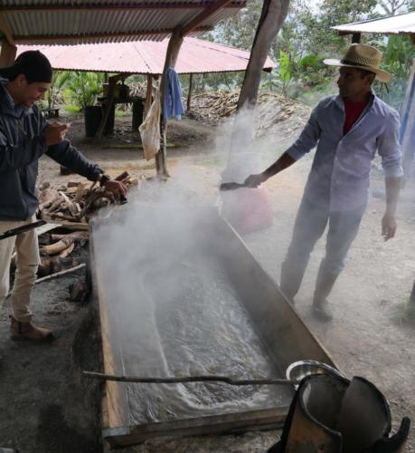 Fabrication du sucre complet chez Eduardo COMSA