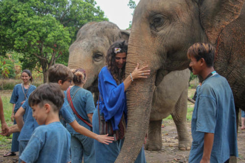 Feeding elephants (8)