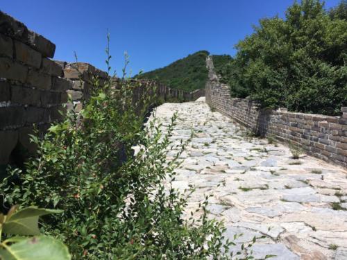 Hors piste Grande Muraille (1)