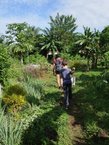 Jardin Zopilote