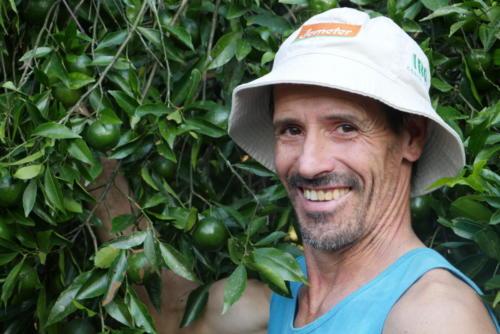 Juao, producteur mandarines
