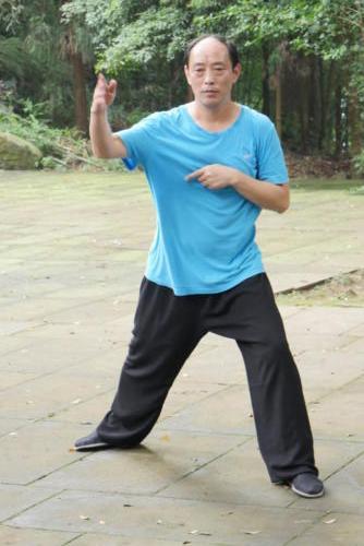 Kung Fu Art