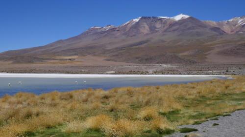 Laguna blanca (2)