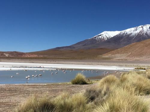Laguna blanca 1