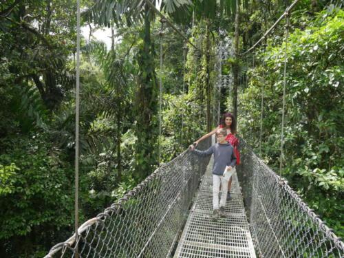 Les ponts du Parc Mistico