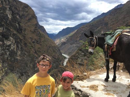 Louis, Esteban et la mule