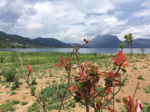 Lugu lake (4)