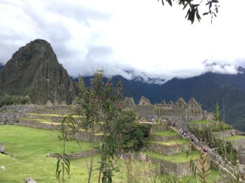 Machu Picchu tout seul