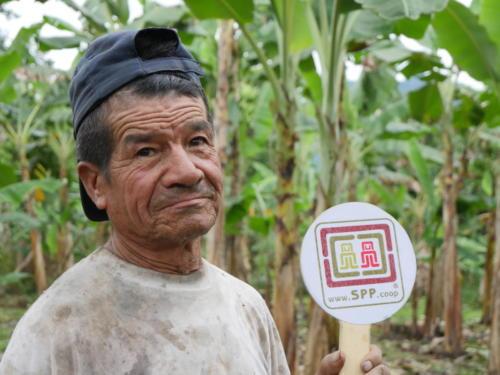 Manuel, producteur banane Apeosae