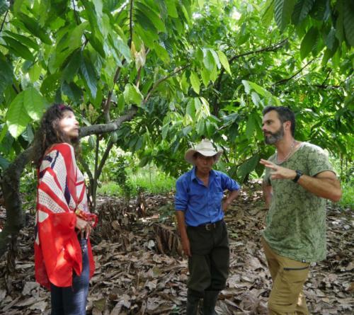 Marcelino, Alexa et Stéphane dans la cacaoyère, Apodip