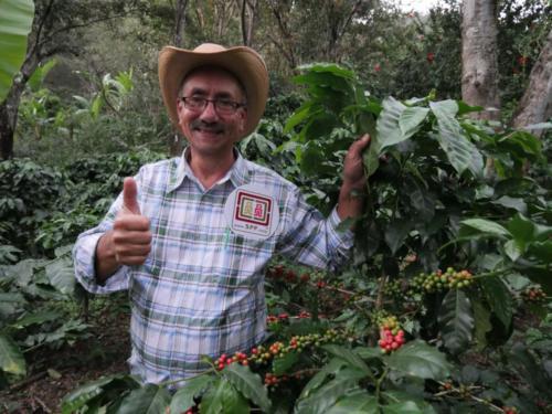 Mario producteur café Comsa