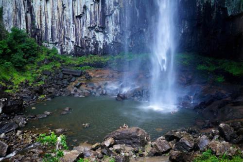 Minyon Falls Baignade