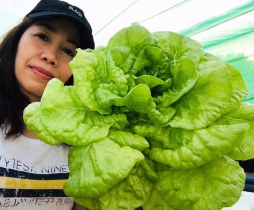 Mum la belle salade!
