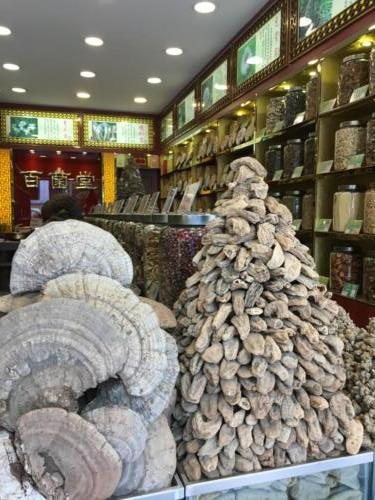 Mushrooms shop (2)