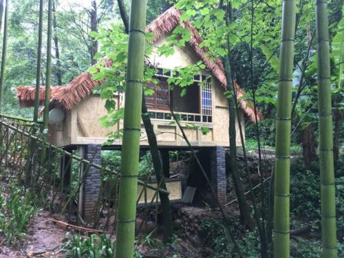 Notre maison dans les bamboos