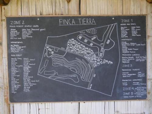 Plan du site Finca Tierra
