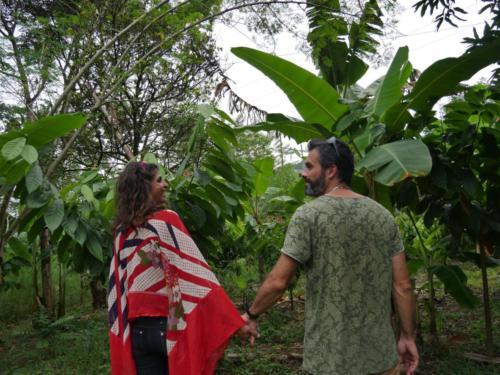 Réflexion permaculturelle, Permaculture Family