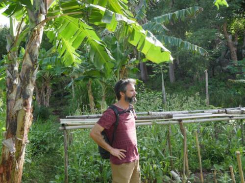 Réflexion permaculturelle Zopilote