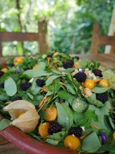 Salade de feuilles et fruits