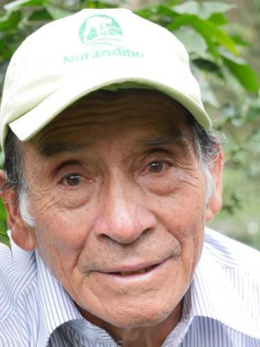 Secundo Guerrero, producteur de café Norandino