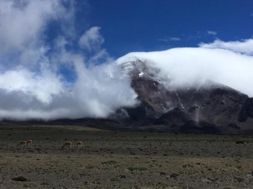 Sommet Chimborazo