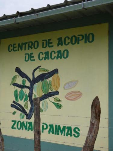 Stock de cacao