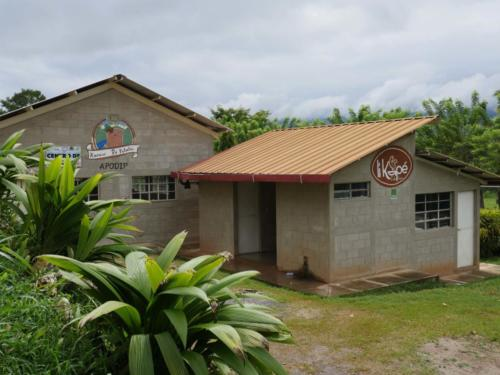 Stockage cacao, Apodip