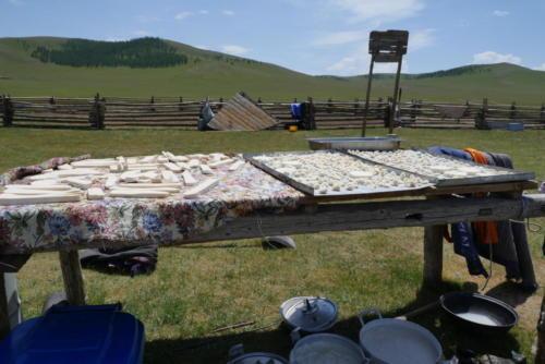 Table de séchage des fromages