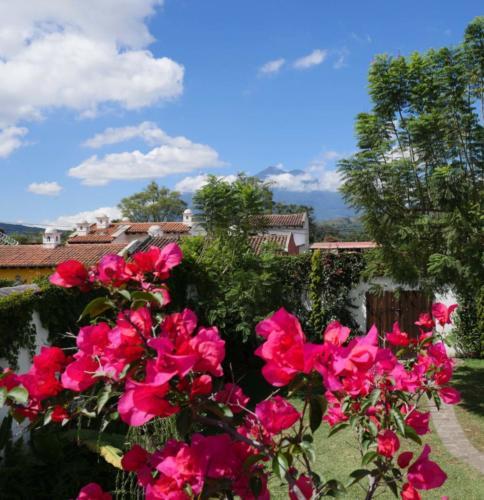 Villas de la Ermita, Antigua