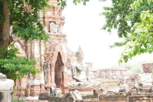 Wat Maha That, Ayutthaya (3)