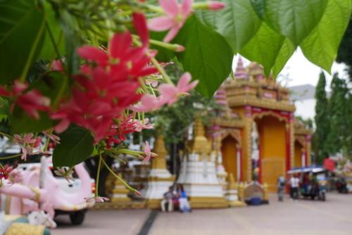 Wat Si Muang (4)