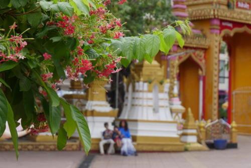 Wat Si Muang (5)