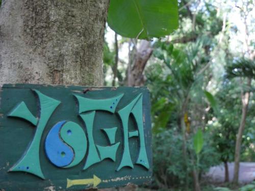Yoga Zopilote